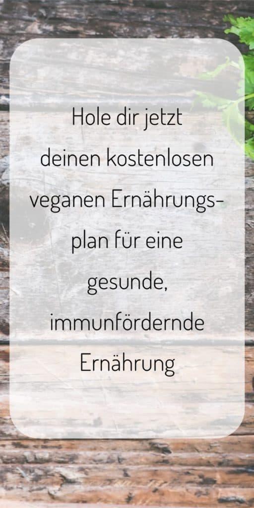 Hole dir jetzt deinen kostenlosen veganen Ernährungsplan für eine gesunde immunfördernde Ernährung